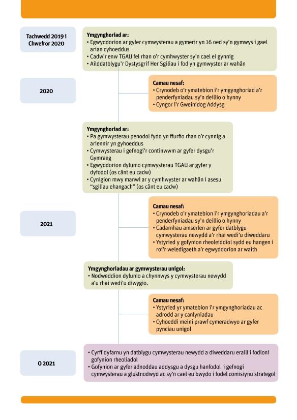 QW consultation timeline CYM